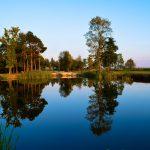 dsc 0013 150x150 - Gmina i Miasto Stawiszyn