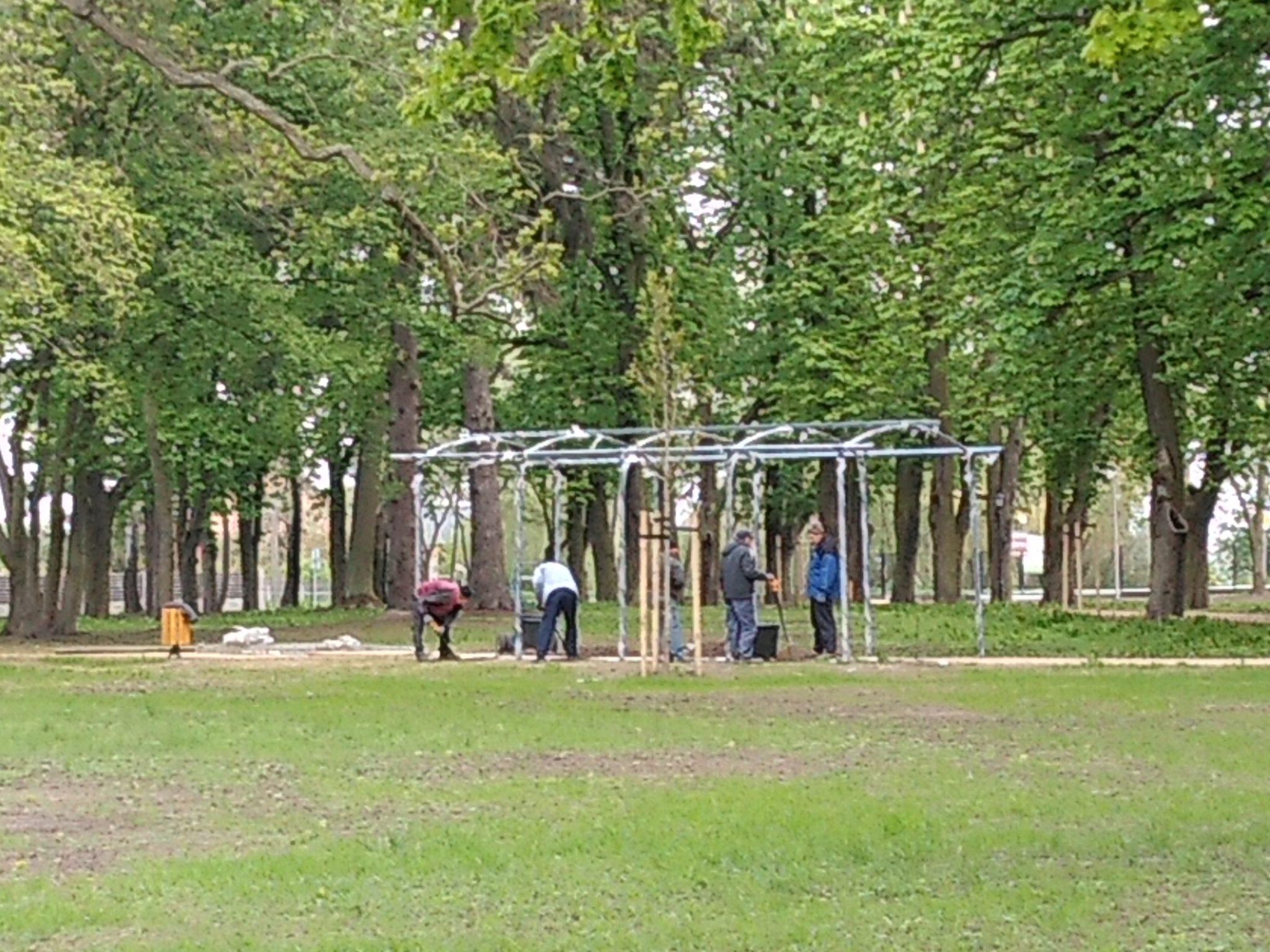 img 20200506 100423179 - Park w Żelazkowie nabiera nowego blasku