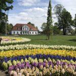 img 2820 150x150 - Rewitalizacja Parku w Żelazkowie