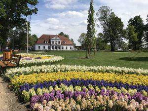 img 2820 300x225 - Rewitalizacja Parku w Żelazkowie
