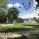 img 2822 150x150 - Rewitalizacja Parku w Żelazkowie